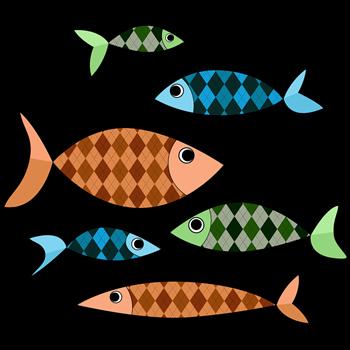 Argyle Fish
