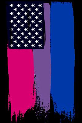 Bisexual Pride American Flag