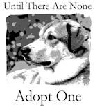 Adopt Puppy