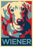 Vote Dog