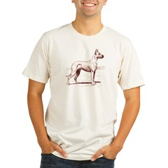Great Dane Ash Grey Organic Men's Fitted T-Shirt