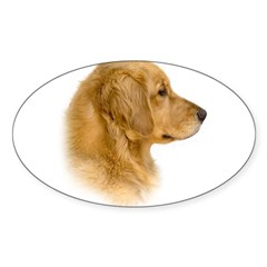 Golden Retriever Portrait Oval Sticker (Oval 10 pk)