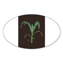 Rectangle Sticker (Oval 10 pk)