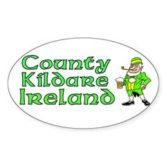 County Kildare, Ireland Rectangle Sticker (Oval 10 pk)