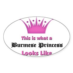 This is what an Burmese Princess Looks Like Sticker (Oval 10 pk)