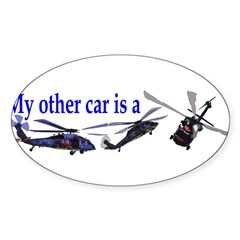 Bumpersticker (21).JPG Sticker (Oval)