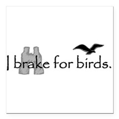 "birding Square Car Magnet 3"" x 3"""