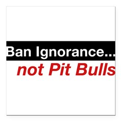 "Bumper Sticker - Ban Ignorance... not Pit Bull Square Car Magnet 3"" x 3"""