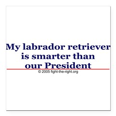 "My labrador retriever is smarter (bumper sticker) Square Car Magnet 3"" x 3"""