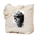 Plato Truth Reality Tote Bag