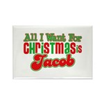 Christmas Jacob Rectangle Magnet (10 pack)